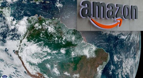 Why you won't see much news about the devastating Amazon rainforest fires on Google News