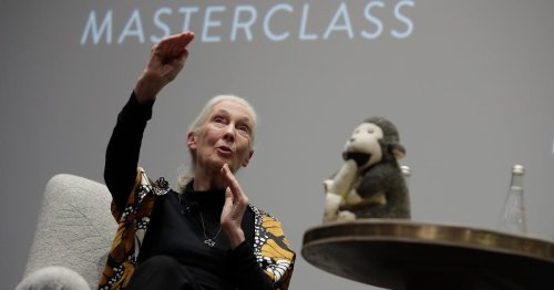 How MasterClass became the style-master of MOOCs
