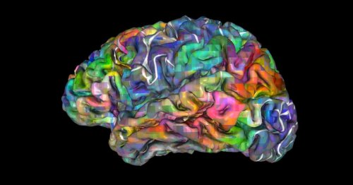 """Scientists say your """"mind"""" isn't confined to your brain, or even your body"""