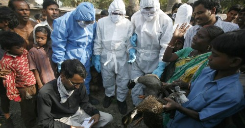 From tracking the coronavirus to checking chickens, India's teachers are on every frontline