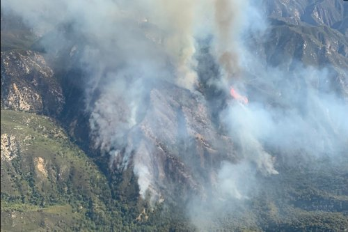 Willow Fire in Monterey County grows to 2,000 acres