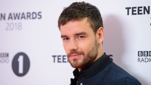 Liam Payne wants to make a movie about his recovery with Russell Brand