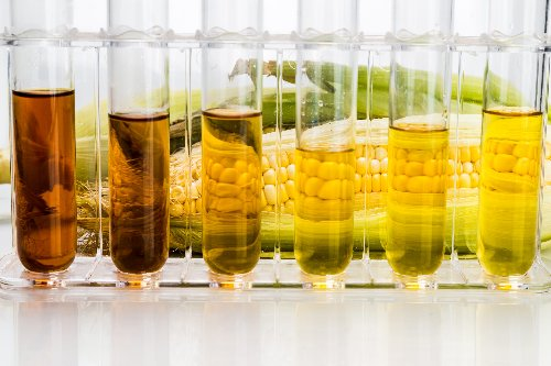 Koch Industries looks to sell biofuels business