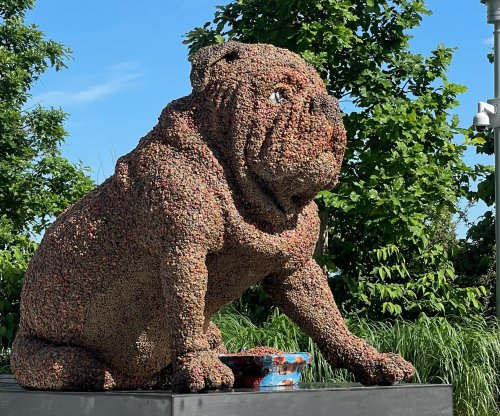PHOTOS: Sculpture made entirely of kibble has message for dog owners