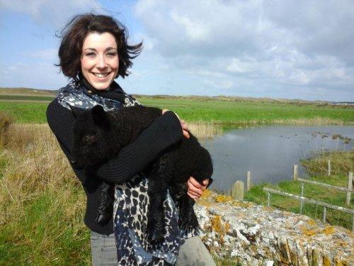 L'affaire du mouton noir (et autres histoires dans le Cotentin)