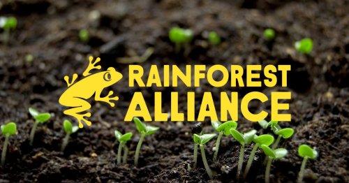 Rainforest Alliance supports communities around the word