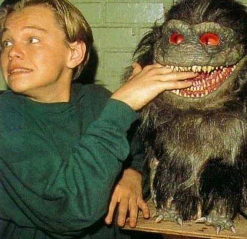 Horror Film Fanatics cover image
