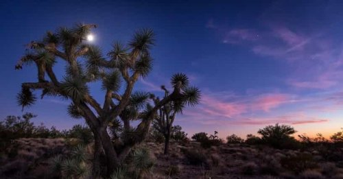 An Arizona Man Tried To Sell His $6.5 Million Ranch Because Of Constant Alien Attacks
