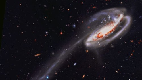APOD/NASA: Hubble'dan İribaş Galaksisi