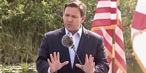 Ron DeSantis is 'sick' of your 'judgment' of unvaccinated Floridians: 'Nobody's trying to get ill here'