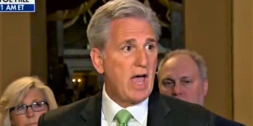 House GOP leader Kevin McCarthy privately blamed Trump entirely for 2020 election loss: report