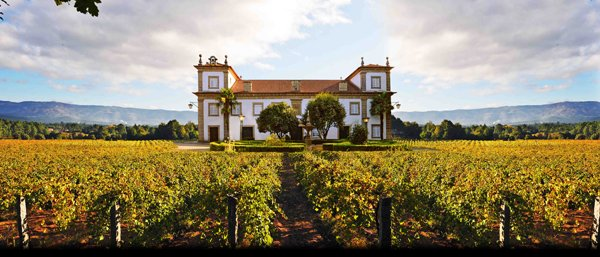 The New Generation of Refreshing Summer Wines From Portugal
