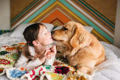 11 Most Affectionate Dog Breeds That Love to Cuddle
