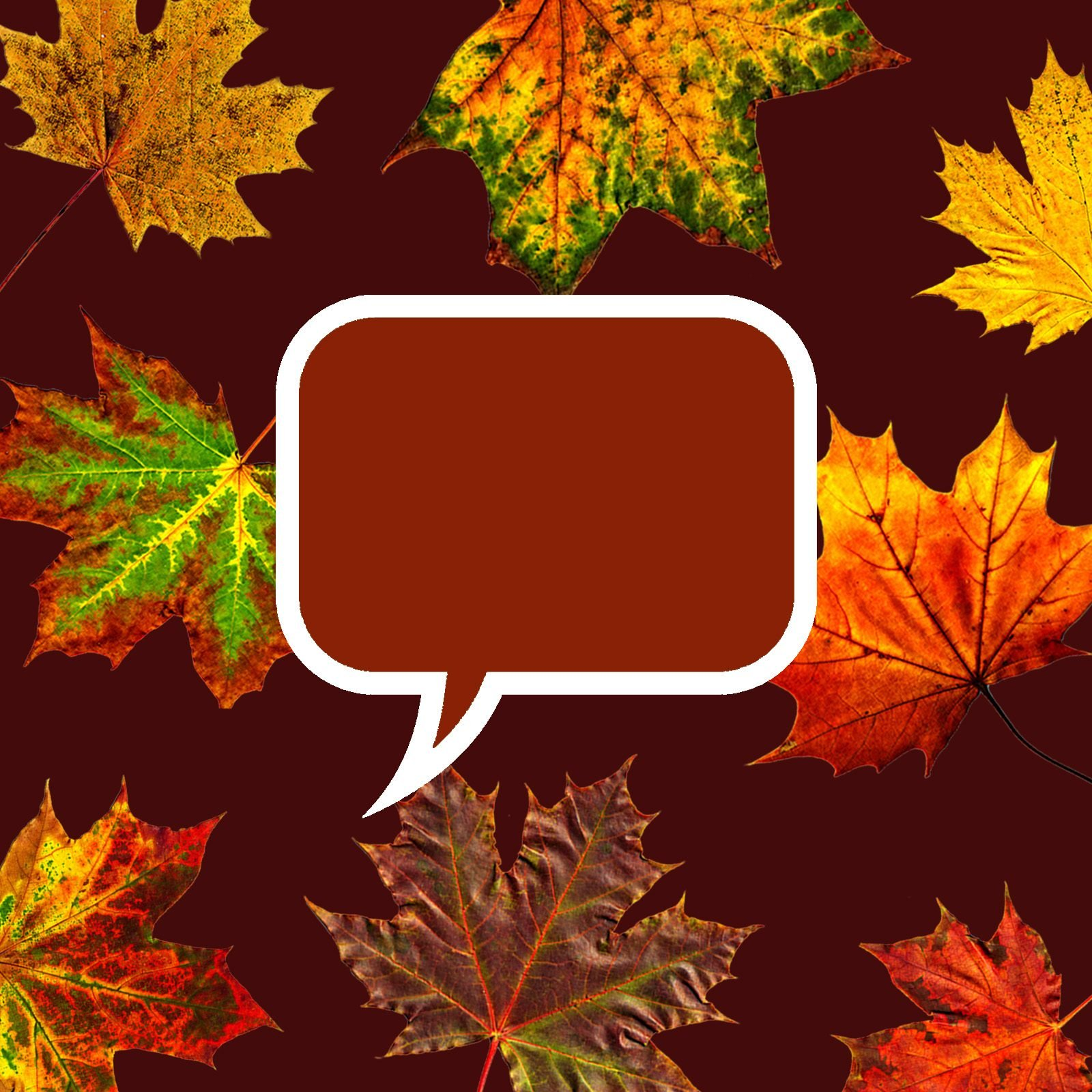 50 Colorful Fall Quotes That Capture the Beauty of the Season