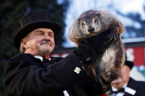 16 Groundhog Facts You Need to Know for Groundhog Day
