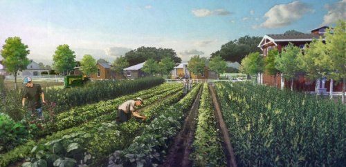 EU Scientists Realize Organic Farming Isn't Sustainable