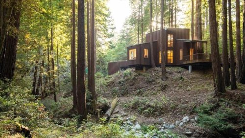 Modern Cabin in the Redwood Forest Near Big Sur Is a Natural Beauty