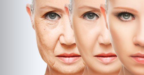 We Can't Cheat Aging and Death, Claims New Study