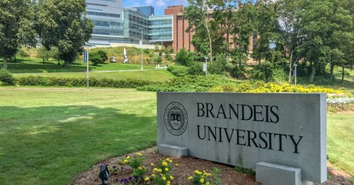 Trigger Warning Now Counts as Violent Language at Brandeis University