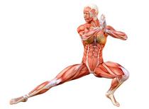 Exercises to Make You Flexible