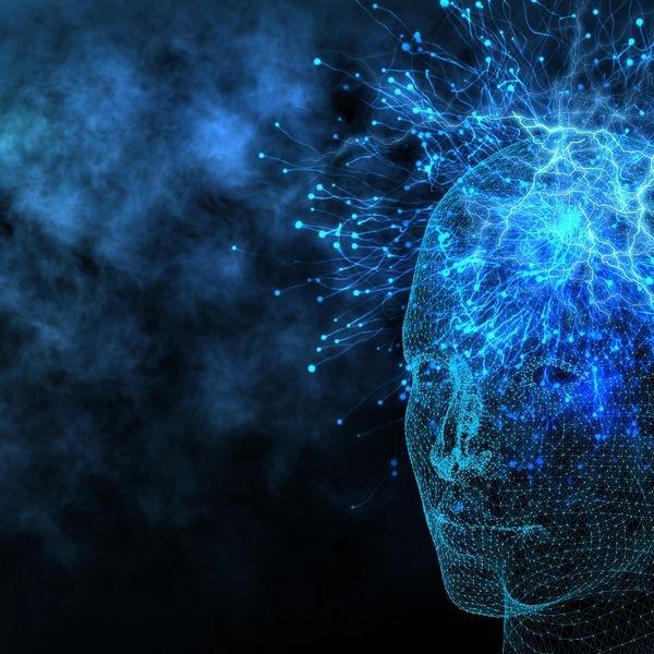 Neuroscience - cover