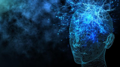 Is human consciousness creating reality?