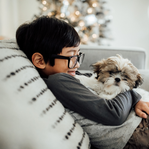 8 Questions to Ask Yourself Before Getting a Family Pet