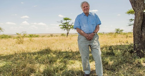 Sir David Attenborough's Latest Doc Is His Witness Statement To The World