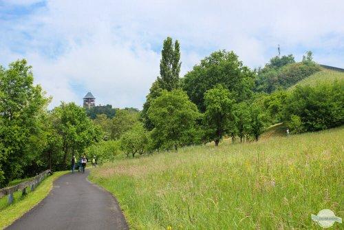 Die schönsten Themenwanderwege in Österreich