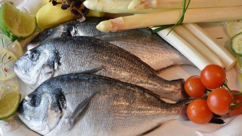 Rügen: In diesen 5 Restaurants gibt's den besten Fisch