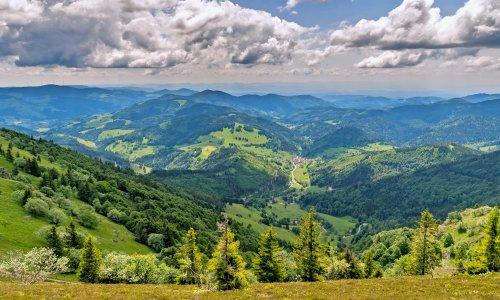 Wandern im Schwarzwald: Die schönsten Wege mit Panorama-Blick