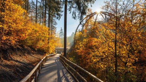 Diese 12 Orte im Harz musst du gesehen haben
