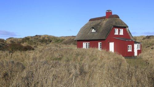 Ferienhaus in Dänemark mieten: Tipps für den Traumurlaub