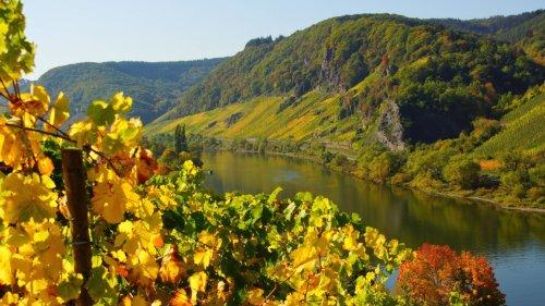 Die schönsten Reiseziele in Deutschland im Herbst