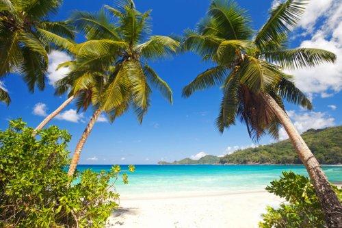 Traumziel Seychellen - was ihr über den Inselstaat wissen müsst
