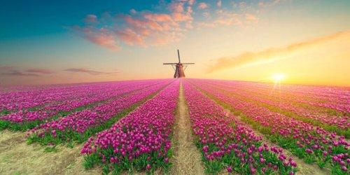 Holland - 15 spannende Infos & Urlaubsziele für deinen nächsten Urlaub