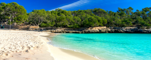Mallorca Reiseführer - alle Infos für Reisende im Überblick