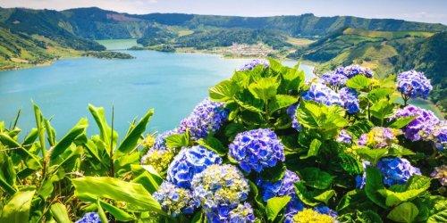 Azoren Tipps - Der optimale Guide für die grüne Inselgruppe im Atlantik