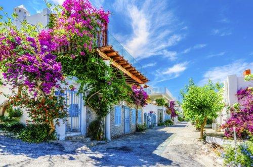 Bodrum Tipps - der optimale Guide für Urlaub an der türkischen Ägäis