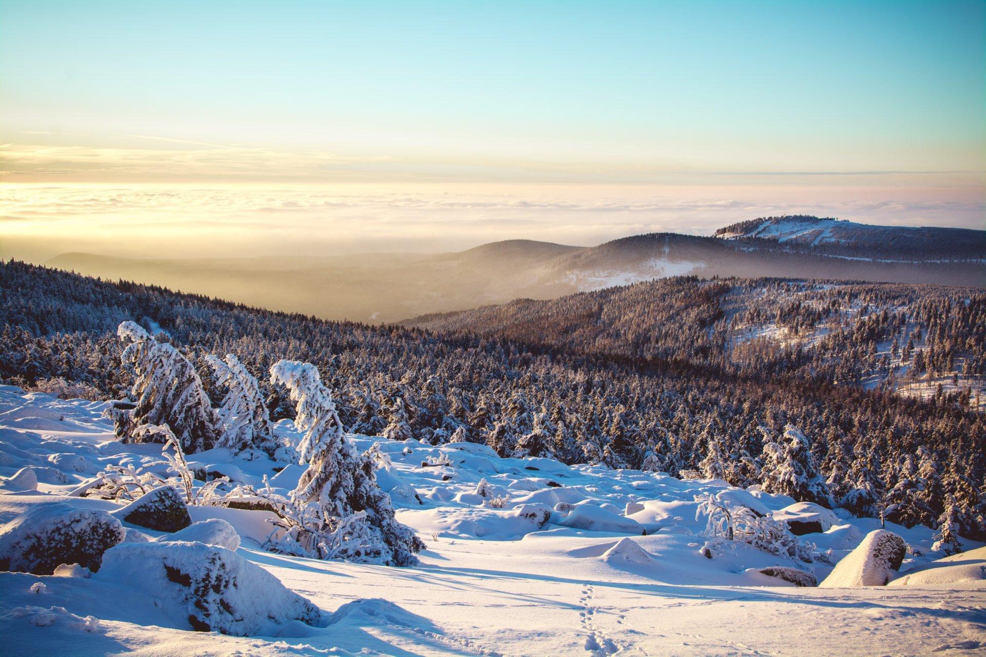 Harz - 16 spannende Infos für einen Urlaub im sagenumwobenen Harz
