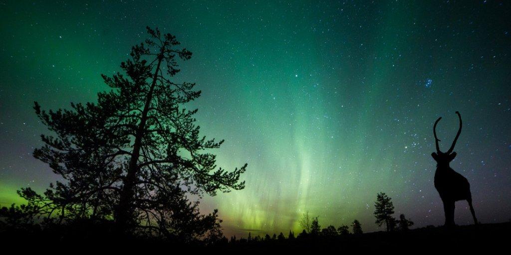 Die 10 besten Orte um Polarlichter zu sehen weltweit
