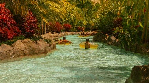 Teneriffa Wasserparks - Infos zu den top 4 Aquaparks im Überblick