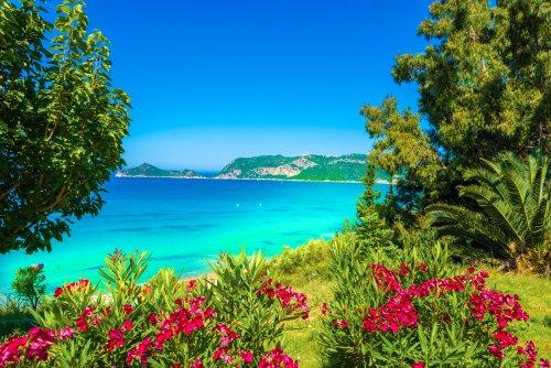 Madeira Urlaub: die günstigsten Angebote & Urlaubsschnäppchen