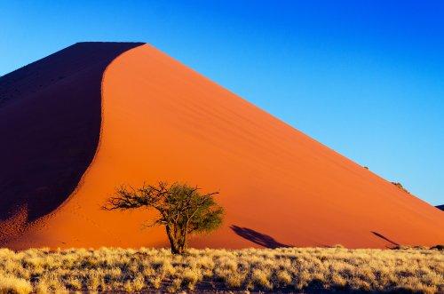 Grenzenloses Namibia - Lernt den einzigartigen Wüstenstaat kennen