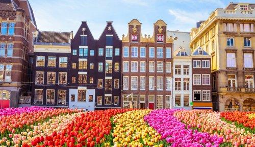 Die leckersten Restaurants in Amsterdam für euren Städtetrip