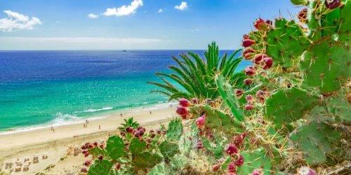 Top 11 Fuerteventura Sehenswürdigkeiten für Touristen
