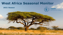 Mali: West Africa Seasonal Monitor (2021 Season) - Jun (Dekad 1), 2021