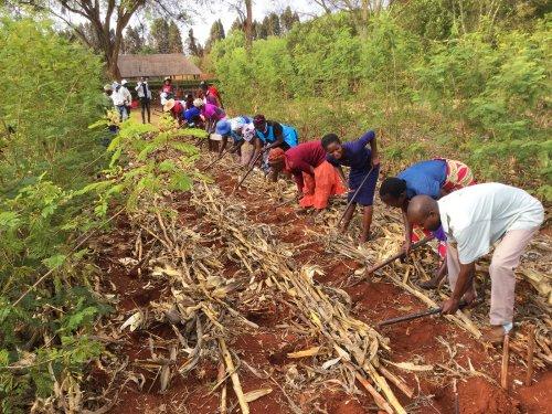 Zimbabwean nonprofit promotes 'God's way' of farming