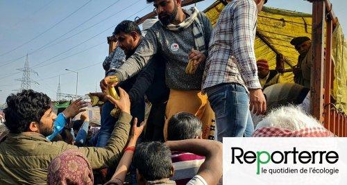 Dortoirs, cantines, crèches... Les paysans indiens révoltés créent une « république autonome »