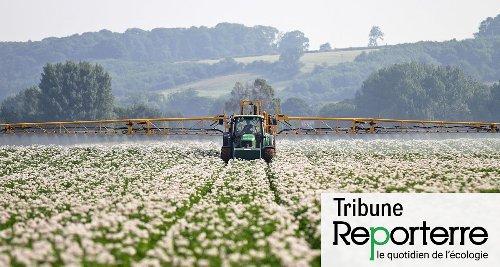 Pesticides : les radars défectueux des autorités sanitaires